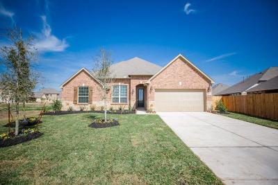 Rosenberg Single Family Home For Sale: 7523 Dry Stone Lane