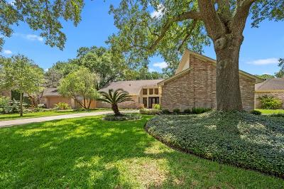 Houston Single Family Home For Sale: 7123 Halfpenny Road