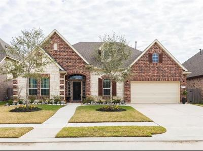 Dickinson Single Family Home For Sale: 4309 S Meridian Greens Drive