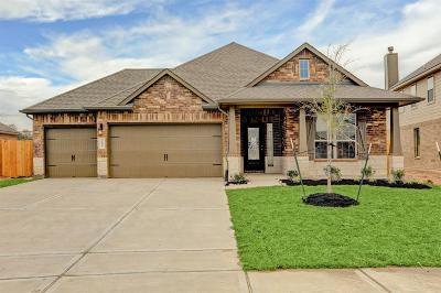 Pearland Single Family Home For Sale: 2806 S Galveston Avenue