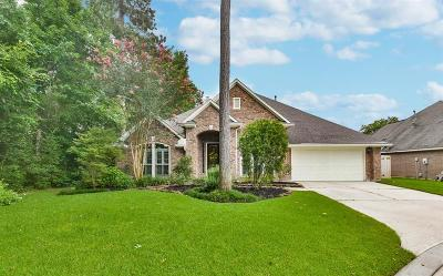 Kingwood Single Family Home For Sale: 3303 Misty Alcove Court