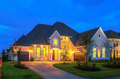 Tomball Single Family Home For Sale: 30 Wooded Overlook Drive