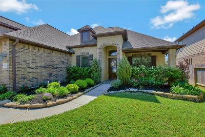 Tomball Single Family Home For Sale: 11019 Sir Alex Drive