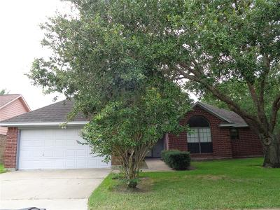 Bay City Single Family Home For Sale: 3403 Wentletrap Street