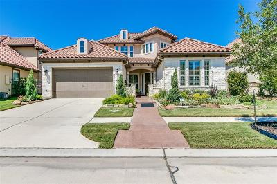 Sugar Land Single Family Home For Sale: 15 Silent Circle Drive