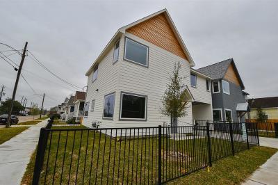 Houston Single Family Home For Sale: 703 James Street