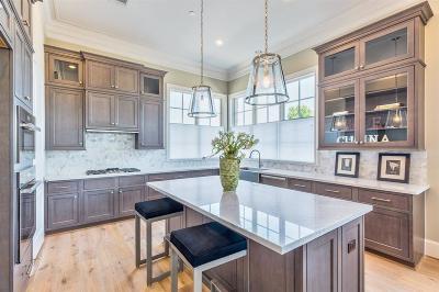 Houston Condo/Townhouse For Sale: 3842 Glen Arbor Drive