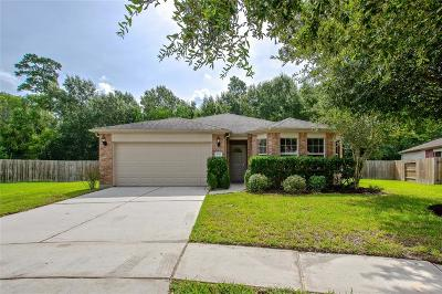 Houston Single Family Home For Sale: 4750 Woodspring Glen Lane