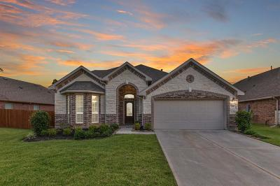 Conroe Single Family Home For Sale: 3226 Discovery Lane
