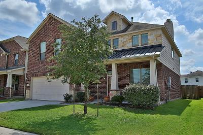 Tomball Single Family Home For Sale: 10003 Blissful Valley