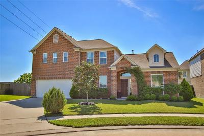 Katy Single Family Home For Sale: 4803 Vintage Grove Court