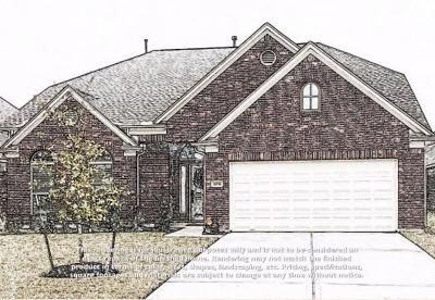 Conroe Single Family Home For Sale: 10151 North Whimbrel Circle