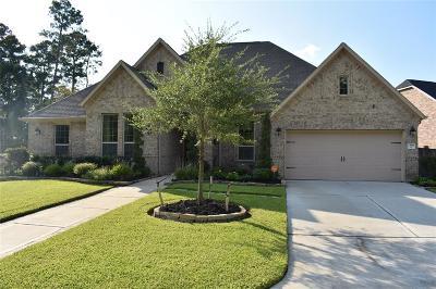 Cypress Single Family Home For Sale: 13918 Rivendell Crest Lane