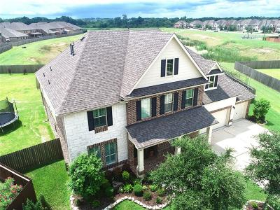 Friendswood Single Family Home For Sale: 1132 Wigeon Court