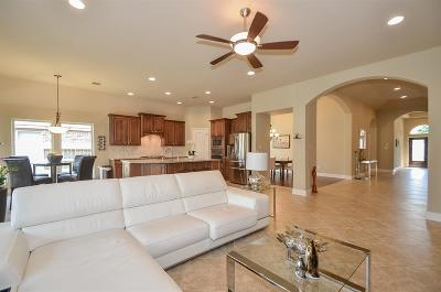 Sugar Land Single Family Home For Sale: 4515 Hickory Branch Lane