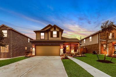 Katy Single Family Home For Sale: 6734 Barrington Creek Trace