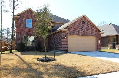 Single Family Home For Sale: 2415 Garden Falls Drive