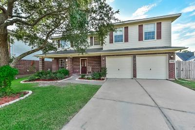 Pearland Single Family Home For Sale: 3102 Hammerwood Circle