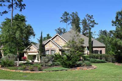The Woodlands Single Family Home For Sale: 2 Mountain Bluebird Place