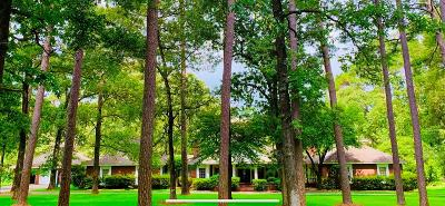 Tomball Single Family Home For Sale: 22911 Holly Creek Trl