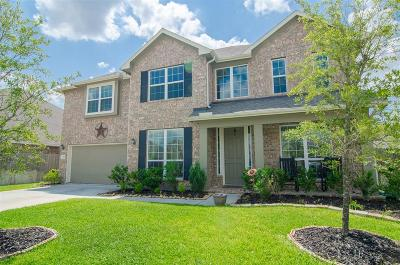 Tomball Single Family Home For Sale: 13315 Edison Trace Lane