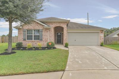 Spring Single Family Home For Sale: 6002 Flagg Ranch Court