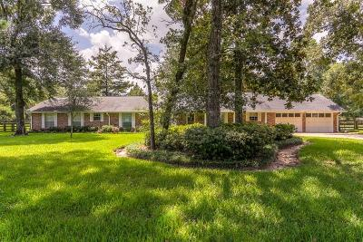 Single Family Home For Sale: 26407 Pin Oak Drive