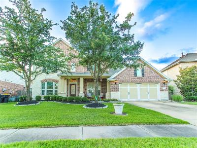 Galveston County, Harris County Single Family Home For Sale: 18522 Cascade Timbers Lane