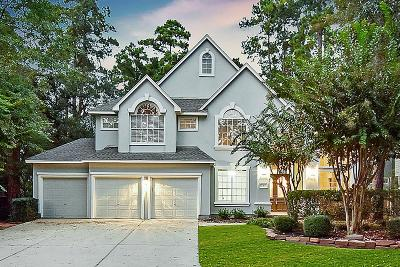 The Woodlands Single Family Home For Sale: 8 Spiral Leaf Court