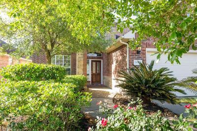 Katy Single Family Home For Sale: 24507 Sawgrass Meadow Lane