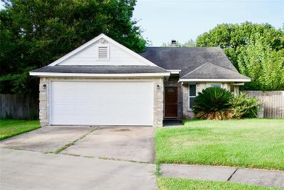 Katy Single Family Home For Sale: 20502 Blue Beech Drive