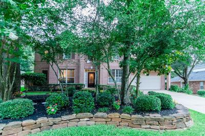 The Woodlands Single Family Home For Sale: 31 S Chandler Creek Circle