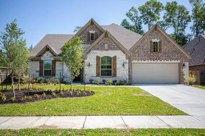 New Caney Single Family Home For Sale: 18786 Monetta Drive