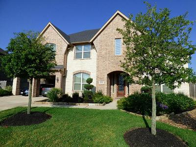 Fulshear Single Family Home For Sale: 3806 Sims Pointe Court