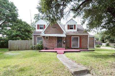 Houston Single Family Home For Sale: 402 Winona