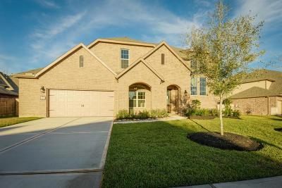 Katy Single Family Home For Sale: 3923 Birdsall Falls Lane