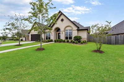 Friendswood Single Family Home For Sale: 2524 Davis Prairie Lane