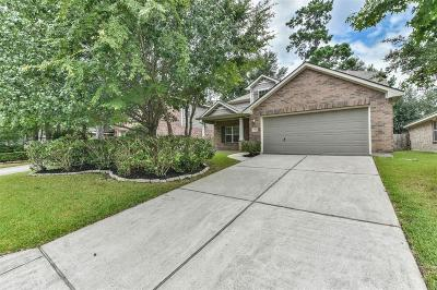 Single Family Home For Sale: 30 N Star Ridge Circle