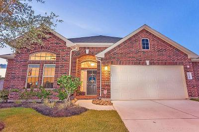 Katy Single Family Home For Sale: 4118 Sabatini Court
