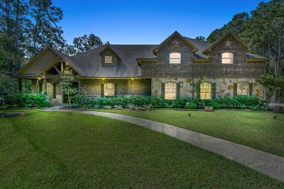 Magnolia Single Family Home For Sale: 11011 Autumn Mist Cove