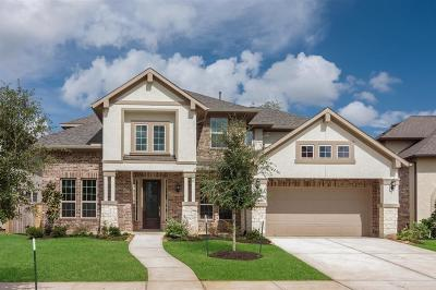 Sugar Land Single Family Home For Sale: 5423 Clouds Creek Lane
