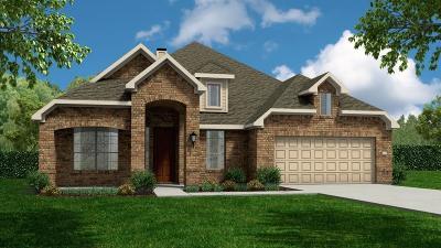 Sugar Land Single Family Home For Sale: 2443 Flowering Brook Lane