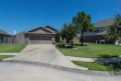 Cypress Single Family Home For Sale: 19738 Benbrook Manor Lane