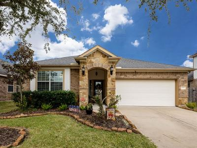 League City Single Family Home For Sale: 6172 Newcastle Lane