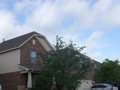 Pearland Single Family Home For Sale: 2710 Kingston Manor Lane