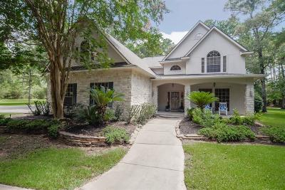 Magnolia Single Family Home For Sale: 19702 Holly Court