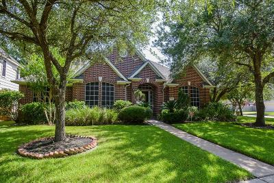 Sugar Land Single Family Home For Sale: 5302 Rebel Ridge Drive