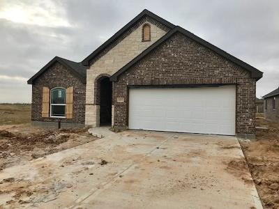 Single Family Home For Sale: 31707 Casa Linda Drive