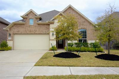 Cypress Single Family Home For Sale: 19918 Virginia Falls Lane