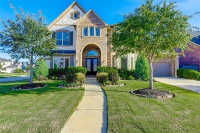 Fulshear Single Family Home For Sale: 27714 Springbrook Court